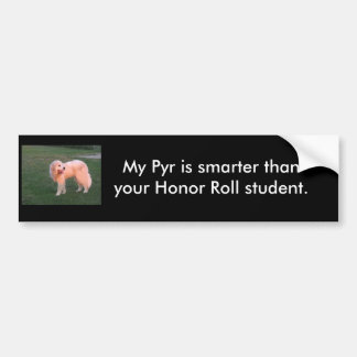 Smart Pyr Bumper Sticker
