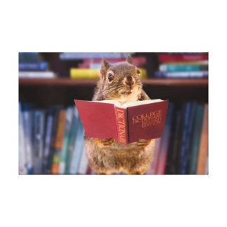 Smart Squirrel Reading a Dictionary Canvas Prints