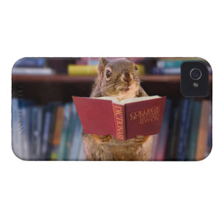 Smart Squirrel Reading a Dictionary iPhone 4 Cover