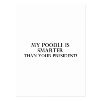 Smarter Than The President 3 Post Cards