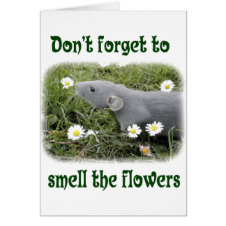 Smell the flowers card