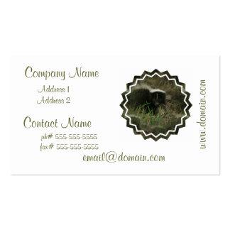 Smelly Skunk Business Card