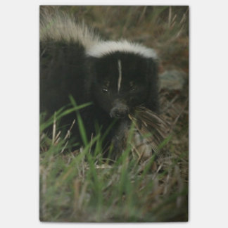 Smelly Skunk Post-it® Notes