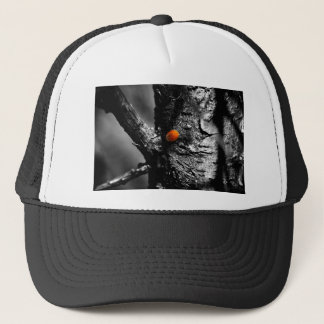 smile for a ladybug trucker hat