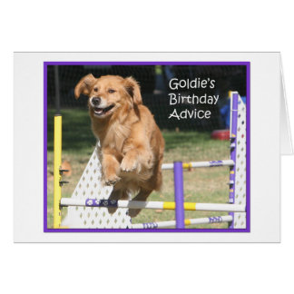 'Smile' Golden Retriever Agility Birthday Card