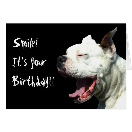 Smile it's your birthday White Boxer greeting card