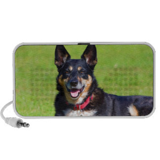 Smile to my love  dog mongrel mixed breed PC speakers