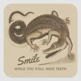Smile while you still have teeth CC0890 Crocodile Square Sticker