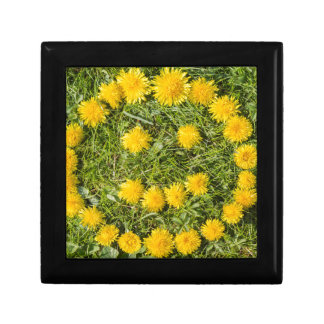 smile with dandelion on grass gift box