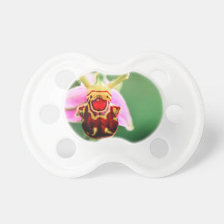 Smiler Baby Pacifiers