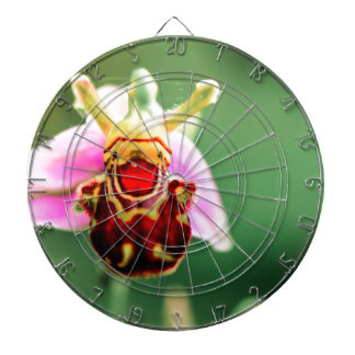 Smiler Dartboard