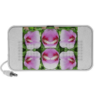 SMILEY Pink Lilly Lily Flowers TEMPLATE Resellers Speakers