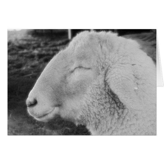 Smiley Sheep Card
