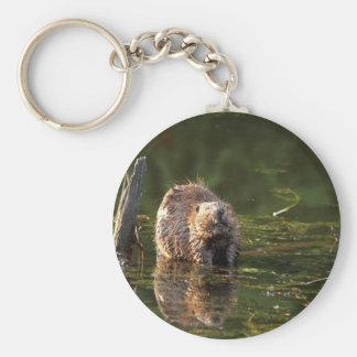 Smiling Beaver Key Ring