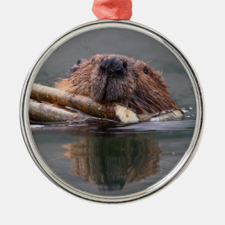 smiling beaver Silver-Colored round decoration