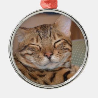 Smiling Bengal Christmas Ornament