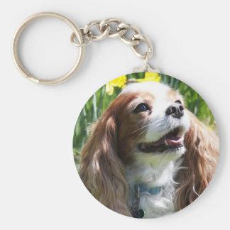 Smiling Blenheim Cavalier King Charles Spaniel Basic Round Button Key Ring