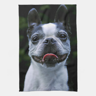 Smiling Boston Terrier Hand Towel