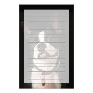 Smiling Boston terrier with collar Custom Stationery