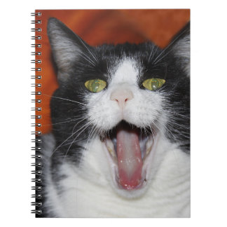 Smiling cat spiral notebook
