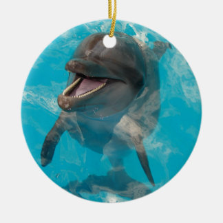 Smiling Dolphin Round Ceramic Decoration