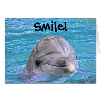 Smiling Dolphin - Smile Card