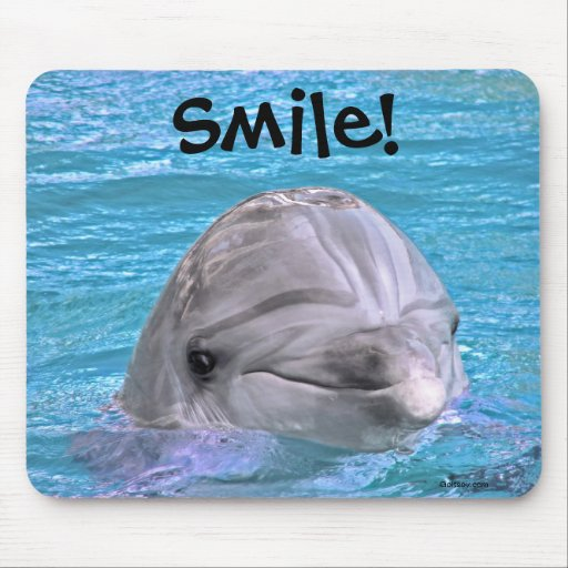 Smiling Dolphin - Smile! Mouse Pad