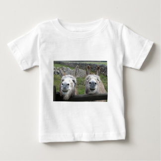 Smiling Donkeys! Baby T-Shirt