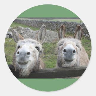 Smiling Donkeys! Classic Round Sticker