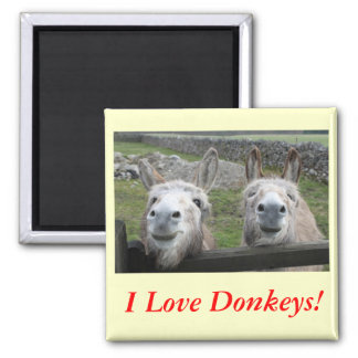 Smiling Donkeys! Magnet