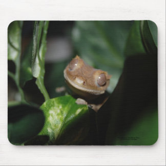 Smiling Gecko Mouse Pad