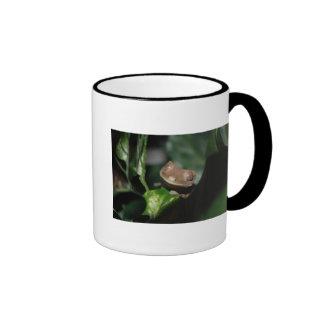 Smiling Gecko Ringer Coffee Mug