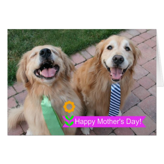 Smiling Golden Retrievers Wearing Ties Mothers Day Card