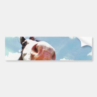 Smiling Horse Bumper Sticker