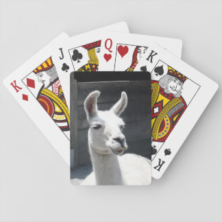 Smiling Llama Playing Cards