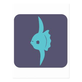 Smiling Mola Fish Icon Postcard