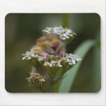Smiling Mousie on Flower Mouse Pad
