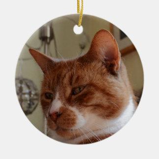 Smiling Nutmeg. Christmas Ornament