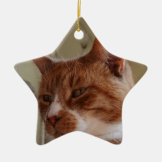Smiling Nutmeg. Christmas Ornament