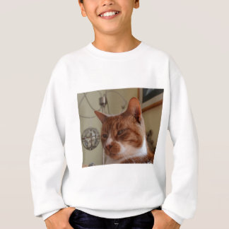 Smiling Nutmeg. Sweatshirt