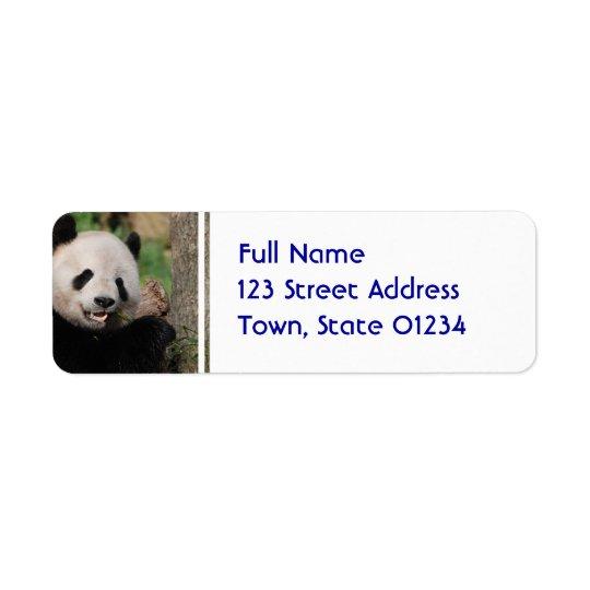 Smiling Panda Bear