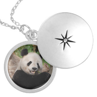 Smiling Panda Bear Locket Necklace