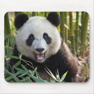 Smiling Panda Portrait Mouse Mat