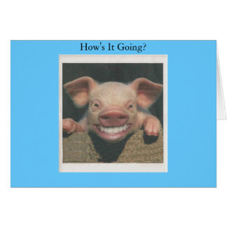 smiling pig how's it going greeting card