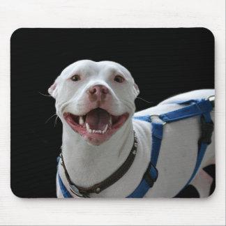 Smiling pit bull mousepad