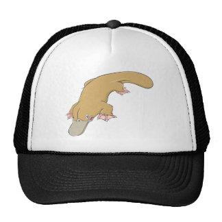 Smiling Platypus Cap