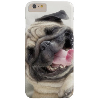 Smiling pug.Funny pug Barely There iPhone 6 Plus Case