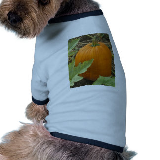 Smiling Pumpkin Doggie T-shirt