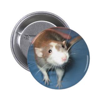 SMILING RAT PIN/ BUTTON