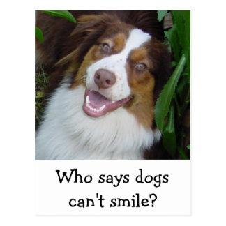 Smiling Red Tri Aussie Postcard